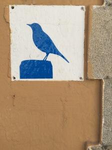 bluebird cambrils